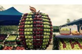 National Apple Festival held in north Moldova city
