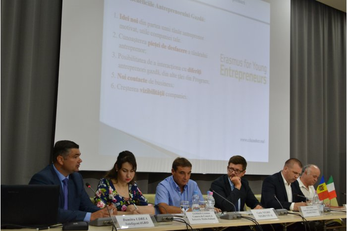 За последние годы в Молдове увеличились площади насаждений ореха и урожаи этой культуры