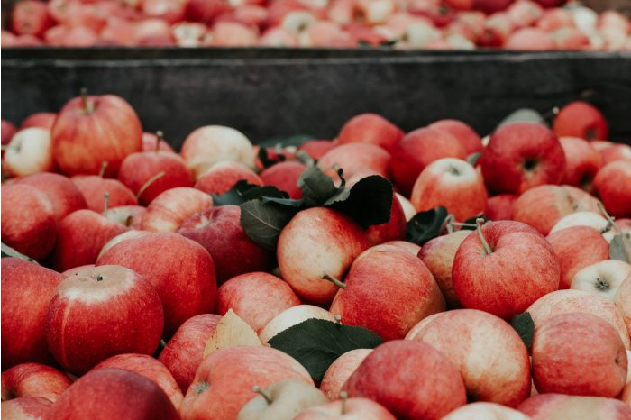 MOLDPRES News Agency - Moldovan apples to be exported to